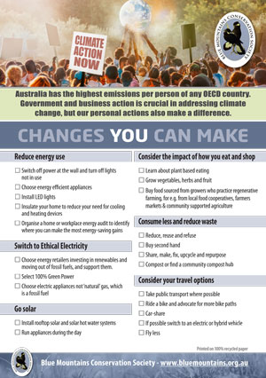 Climate Action Now Flyer